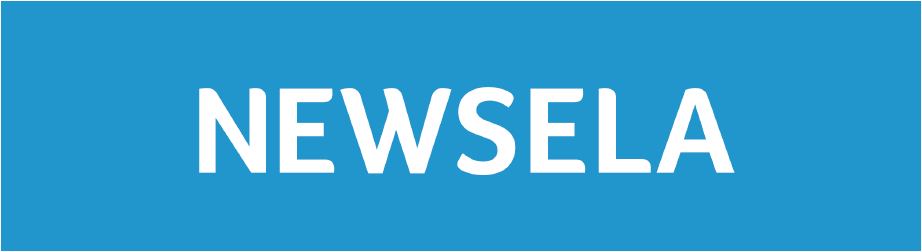 Newsela logo to their website.